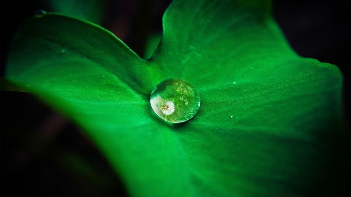 Czy kremację można uznać za ekologiczny proces?